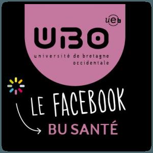LogoFBBUSante